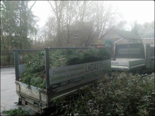 Remorque remplie de branches de sapins