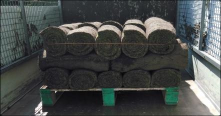 Rouleaux de pelouses sur une palette à l'arrière d'un camion